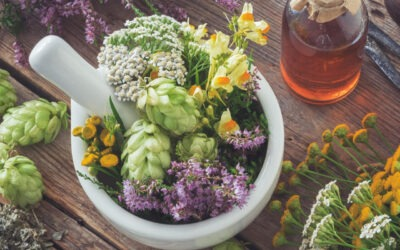 Jakie domowe zioła na płodność stosować?